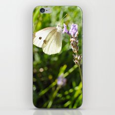 Opaque Butterfly iPhone & iPod Skin