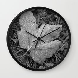 Water drops on leaf maple, black and white photo Wall Clock