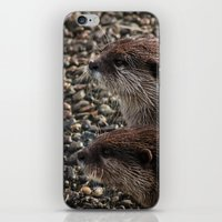 otters iPhone & iPod Skins featuring Pair of Otters by Eleven Collective