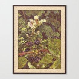 Summer #2 Canvas Print