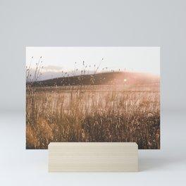 Summer Fields - Rustic Adventure Nature Photography Mini Art Print
