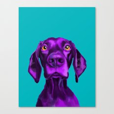 The Dogs: Buddy 2 Canvas Print