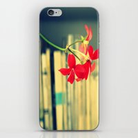 books iPhone & iPod Skins featuring books by Eva Lesko