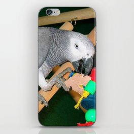 Doobie the parrot iPhone Skin