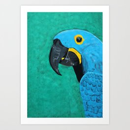 Hyacinth Macaw Gouache Painting Art Print