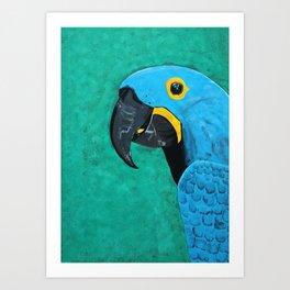 Hyacinth Macaw Gouache Painting Art Print
