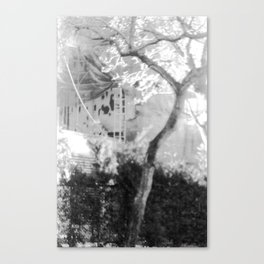 Spotted Canvas Print