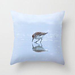 Shorebirds II Throw Pillow