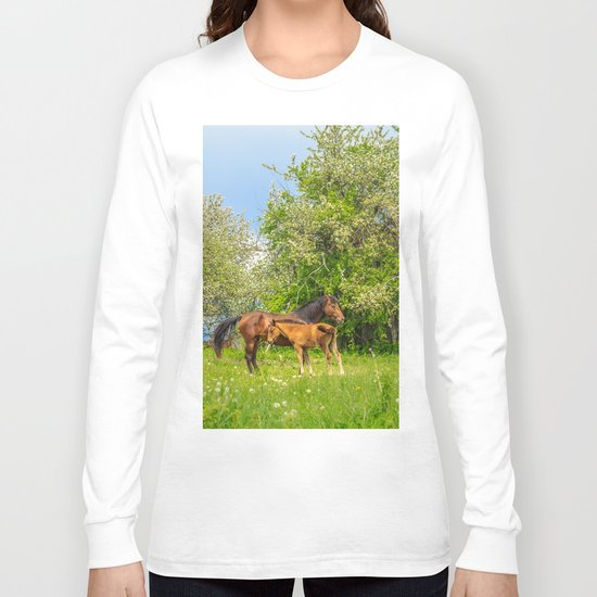 Foal Horse Baby Long Sleeve T-shirt