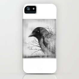 Jackdaw at my Window iPhone Case