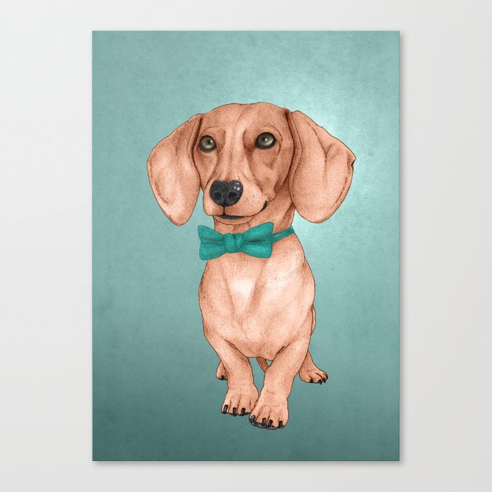 Dachshund, The Wiener Dog Canvas Print