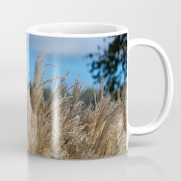 Chinese Silver Grass in a Yorkshire Garden Coffee Mug
