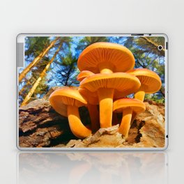 Blackbird Mushrooms Laptop & iPad Skin