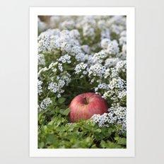 Snow White´s Apple Art Print