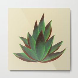 Red and Green Aloe Vera Plant Metal Print