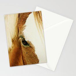 Fly In The Eye Stationery Cards