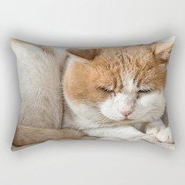 nice cat portrait Rectangular Pillow