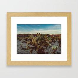 Cholla Cactus Garden X Framed Art Print