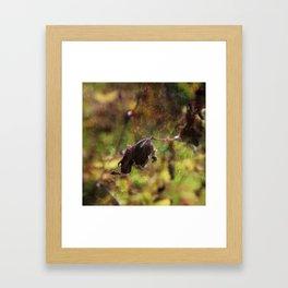 Old leaf artistic composition Framed Art Print