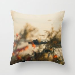 Borth-y-Gest View Throw Pillow