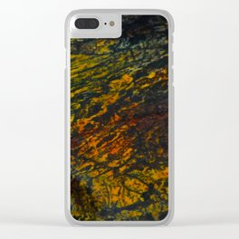 A Fossilized Rainbow Clear iPhone Case