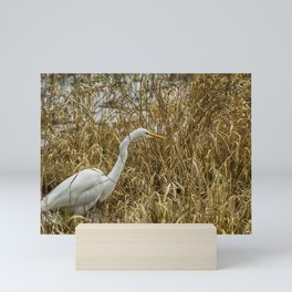 Great Egret Among the Rushes Mini Art Print