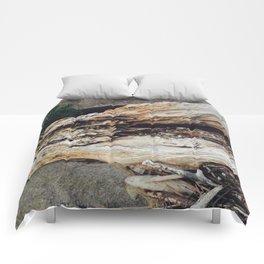 Driftwood Beauty Comforters