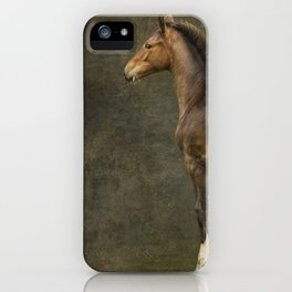 Bred for Beauty dk iPhone Case
