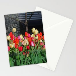 Chicago Tulips Stationery Cards