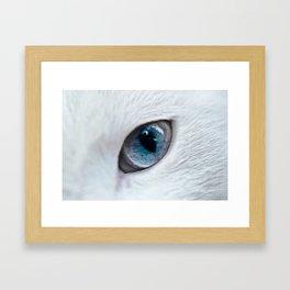 Eye of Cat Framed Art Print