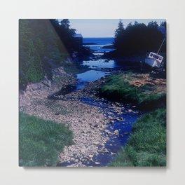 Secret Ocean Cove In New England Metal Print