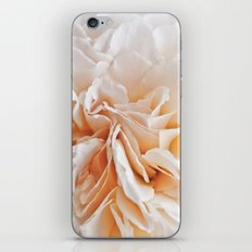 Old Style Rose Flower 3464 iPhone & iPod Skin