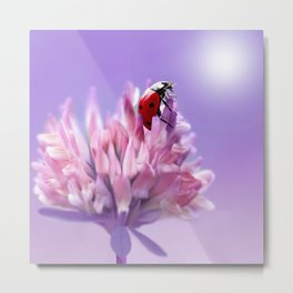 Ladybug  purple background 58 Metal Print