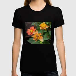 Do You Come Here Often? T-shirt