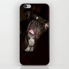Gabby iPhone & iPod Skin