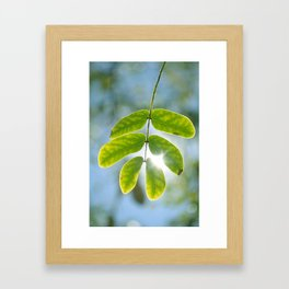 Leaking Light Framed Art Print