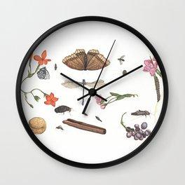 Common place miracles -Natural History Part V Wall Clock