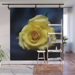 a yellow rose Wall Mural