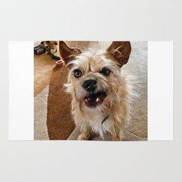 Grumpy Dog Rug