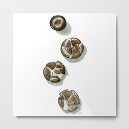 Squished Chocolate Mints Metal Print