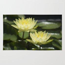Longwood Gardens - Spring Series 295 Rug