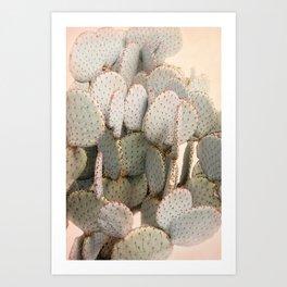 Cactus Blush 2 Art Print