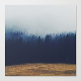 Misty Forest  2 Canvas Print