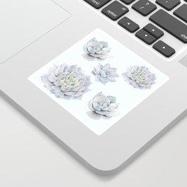 Blue Succulents Sticker