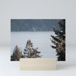 Pines on the Coast at Dusk Mini Art Print