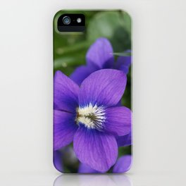 Violets Are Not Blue iPhone Case