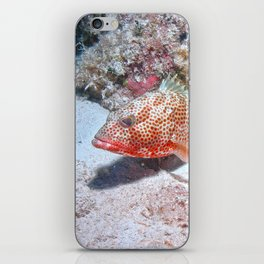 Red Hind iPhone Skin