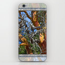 MADRONA TREE DEAD OR ALIVE iPhone Skin