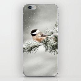 Winter Chickadee iPhone Skin