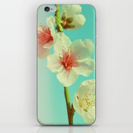 This looks like spring! iPhone Skin